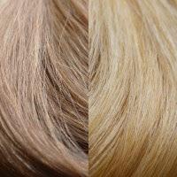 #12/24- Light Golden Brown/Golden Blonde