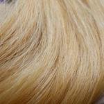 #24- Golden Blonde