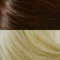#4-22 Medium Brown to Light Blonde Ombre'