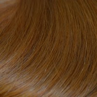 #5 - Light Medium Brown