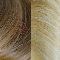 #18 613 - Light Ash Brown Light Pale Blond